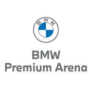 logo premium arena szare (wektor)